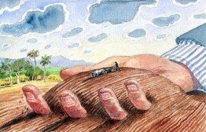 Điều kiện thẩm quyền và trình tự thủ tục chuyển mục đích sử dụng đất