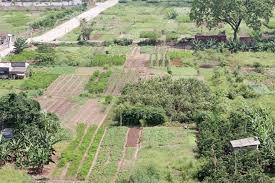 Pháp luật có cho phép đổi đất cho hàng xóm không?