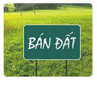 Điều kiện chuyển quyền sử dụng đất theo quy định