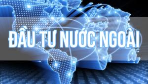 Hoạt động góp vốn của nhà đầu tư nước ngoài tại Việt Nam