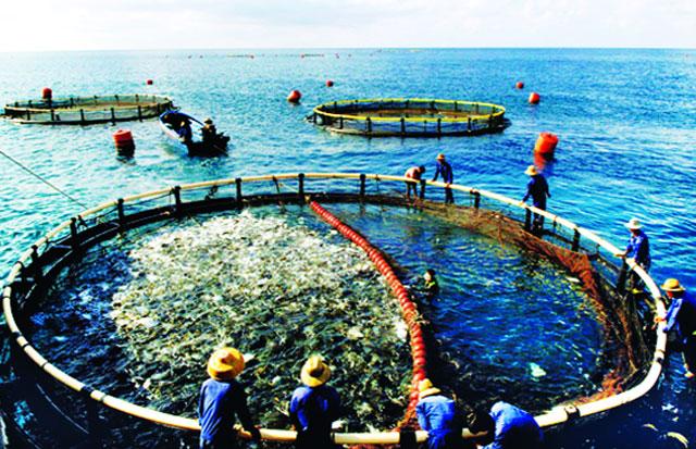 Điều kiện hoạt động đối với lĩnh vực nuôi trồng thủy sản