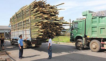 Quy định của pháp luật về xếp hàng hóa trên phương tiện giao thông
