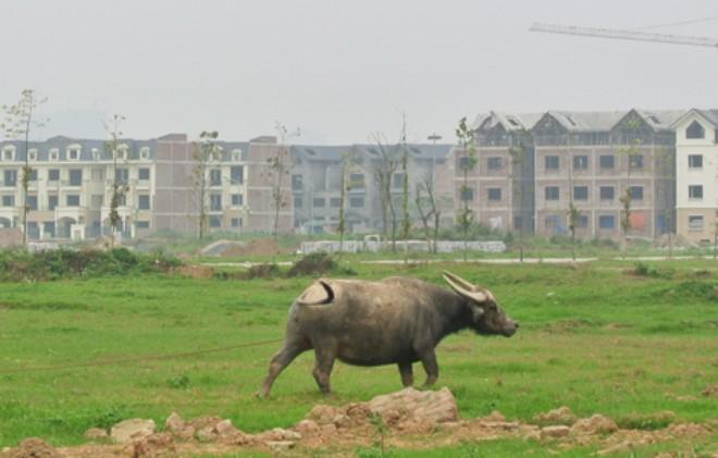 Thủ tục chuyển mục đích sử dụng đất tại Hà Nội theo quy định mới nhất