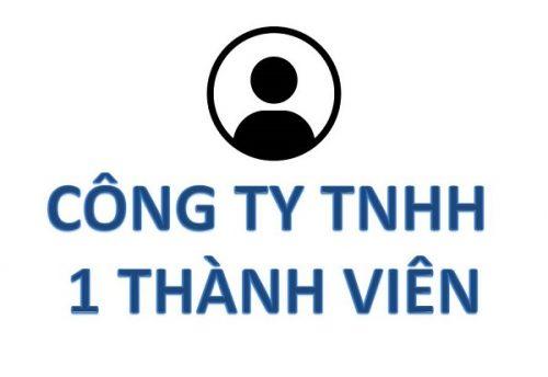 công ty hợp nhất là công ty TNHH 1 thành viên