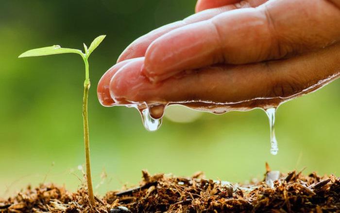 Viên chức nhà nước có được coi là hộ gia đình trực tiếp sản xuất nông nghiệp?