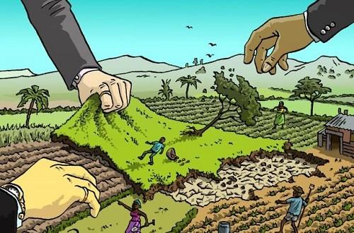 Hồ sơ xin giao đất cho thuê đất không thông qua đấu giá