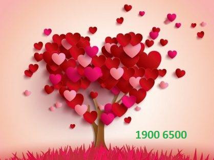 tư vấn tình yêu
