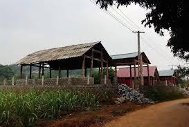 Xây dựng nhà tạm trên đất nông nghiệp và trồng cây lâu năm trên đất nông nghiệp có bị xử phạt không?