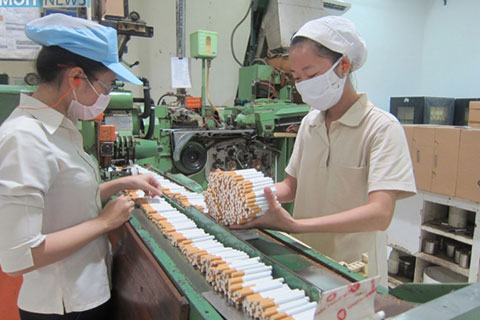 sản xuất sản phẩm thuốc lá