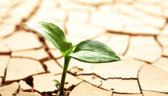 Bồi thường chi phí đầu tư vào đất còn lại khi Nhà nước thu hồi đất