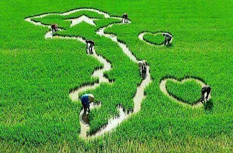 Đăng ký biện pháp bảo đảm bằng quyền sử dụng đất