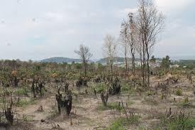 Nguyên tắc xét xử tội vi phạm các quy định về quản lý đất đai được xét xử sau ngày 01 tháng 01 năm 2018
