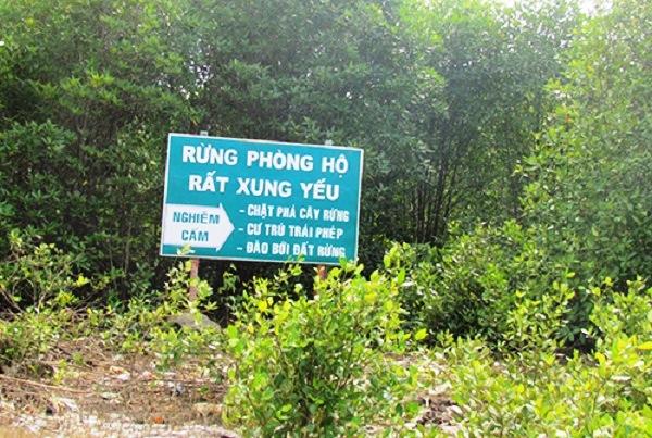 Trình tự, thủ tục xác lập các khu rừng phòng hộ, khu rừng đặc dụng thuộc thẩm quyền của Thủ tướng Chính phủ