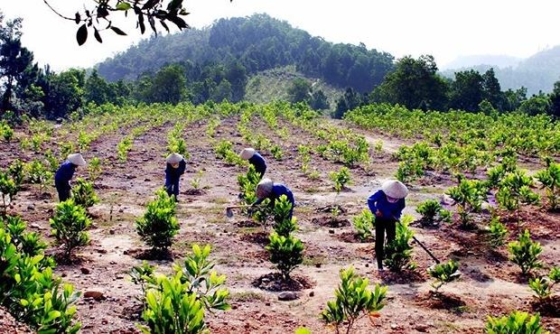 Những hành vi bị nghiêm cấm trong việc sử dụng đất