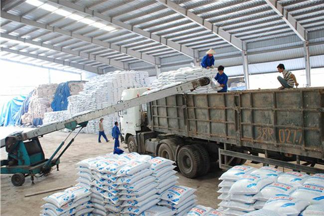 áp dụng biện pháp cấm xuất khẩu
