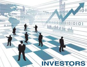 Nội dung kế hoạch lựa chọn nhà đầu tư được quy định như thế nào?
