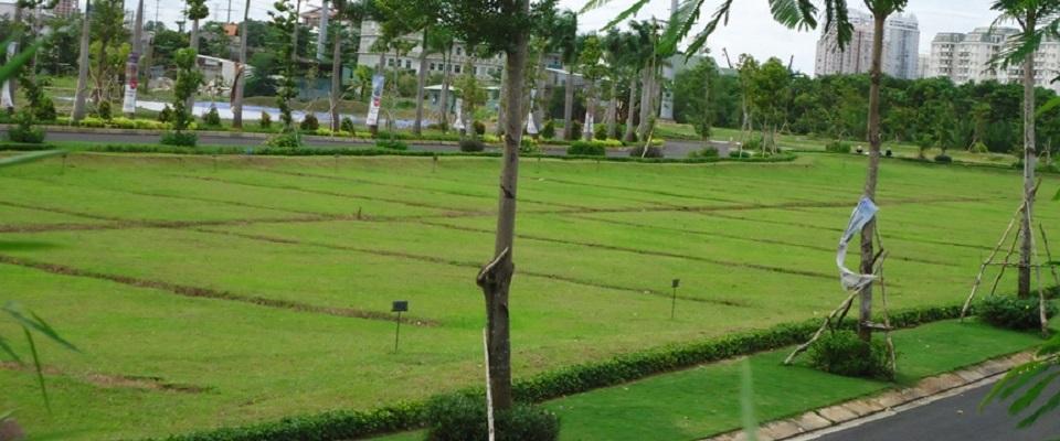 Thủ tục tách thửa tại Bình Phước