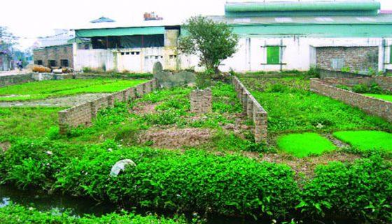 Chuyển mục đích sử dụng đất đất nông nghiệp sang đất ở