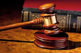 Tải mẫu đề nghị phê chuẩn quyết định buộc pháp nhân phải nộp một khoản tiền để đảm bảo thi hành án