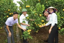 Hỗ trợ ổn định đời sống sản xuất tại Hải Dương khi Nhà nước thu hồi đất