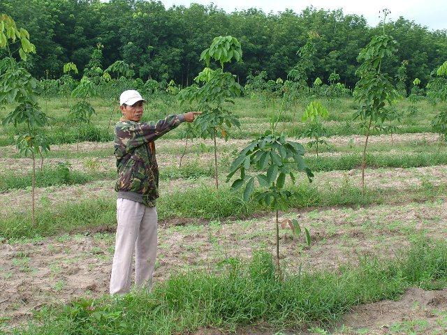Một số khoản hỗ trợ tại Bình Phước khi Nhà nước thu hồi đất