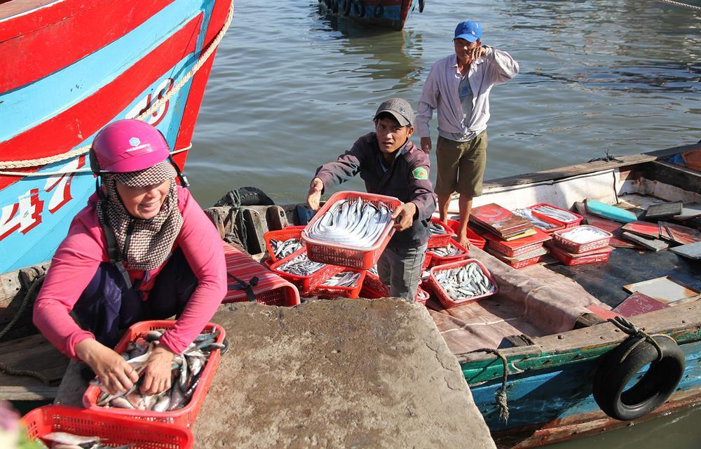 Hỗ trợ đào tạo chuyển đổi nghề tại Hà Tĩnh
