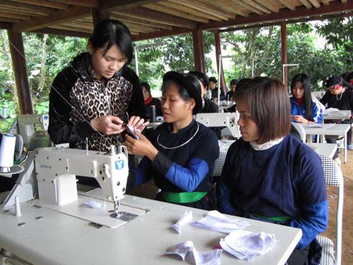 hỗ trợ tại Tuyên Quang