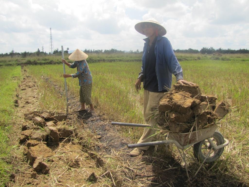 Đào đất cải tạo đất ruộng có phải xin giấy phép không
