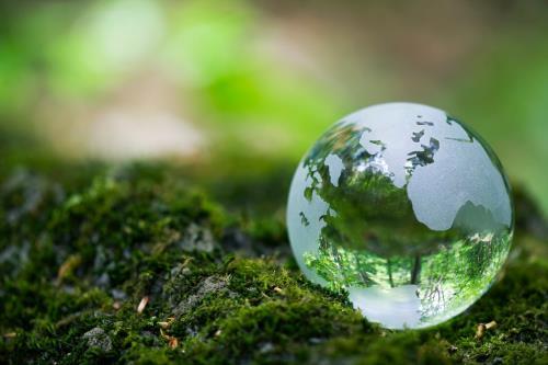 Tải Nghị định 179/2013/NĐ-CP quy định về xử phạt vi phạm hành chính trong lĩnh vực bảo vệ môi trường