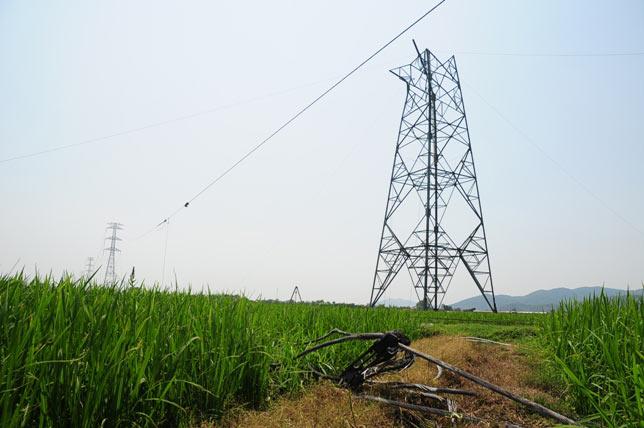 Bồi thường đất nằm trong hành lang tại Thái Bình do bị hạn chế khả năng sử dụng