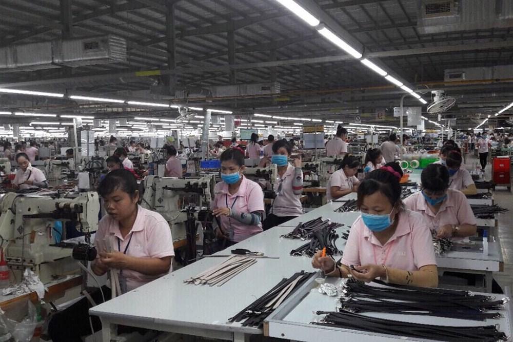 Hỗ trợ đào tạo chuyển đổi nghề và hỗ trợ do ngừng sản xuất kinh doanh tại An Giang khi Nhà nước thu hồi đất