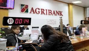 Thủ tục vay vốn Ngân hàng Agribank thế chấp sổ đỏ