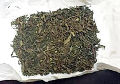 Mua ma túy cỏ về sử dụng có bị truy cứu trách nhiệm hình sự không?