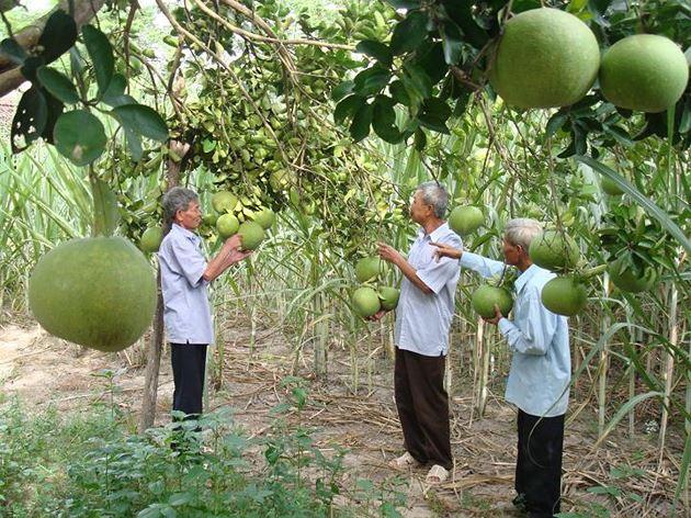 Xác định chi phí đầu tư vào đất còn lại tại Khánh Hòa khi Nhà nước thu hồi đất