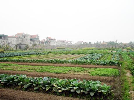 Phí khai thác và sử dụng tài liệu đất đai tại Hưng Yên năm 2019