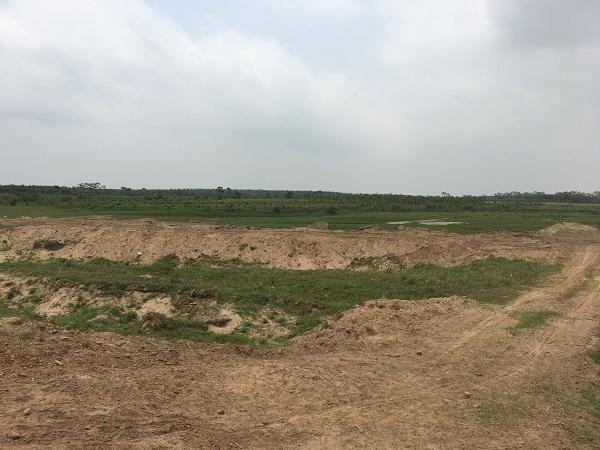Bỏ ruộng hoang bao lâu thì bị thu hồi đất theo quy định