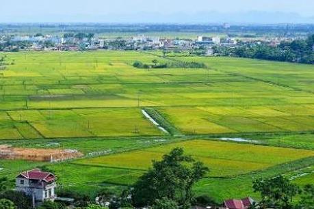 Diện tích tách thửa đất nông nghiệp tại Bình Thuận năm 2019
