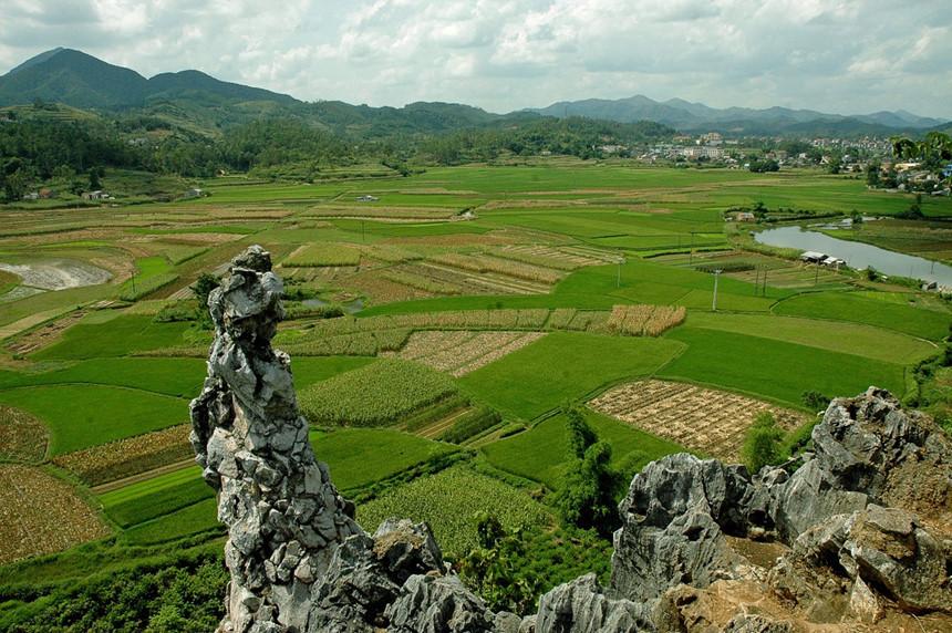 diện tích tách thửa đất nông nghiệp tại Phú Yên