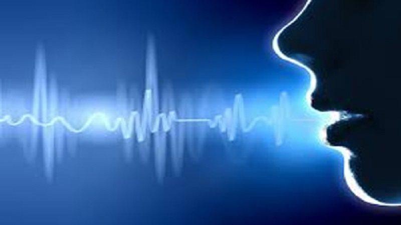 Biện pháp điều tra nhận biết giọng nói được thực hiện thế nào
