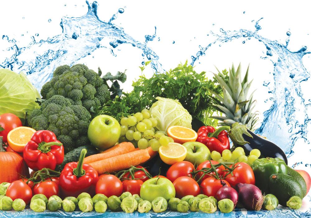 Khám sức khỏe vệ sinh an toàn thực phẩm ở đâu?